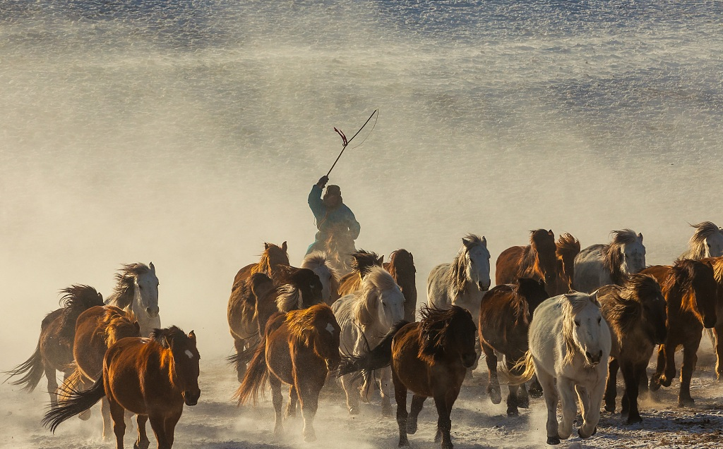 Herdsmen train horses on a snowfield in Chifeng Inner Mongolia autonomous region